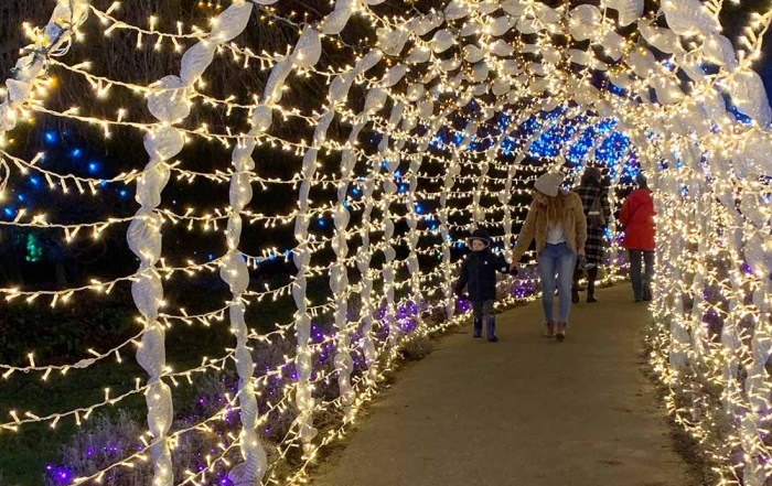 Where to see the best Vancouver Christmas Lights