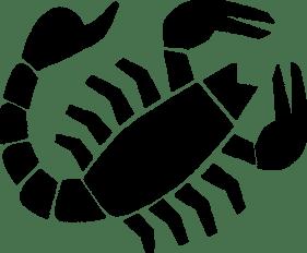 feature_scorpio