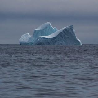Les premiers icebergs