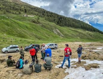 Consulenza dell'Alm Stilfser in Alto Adige da parte di esperti di protezione del bestiame