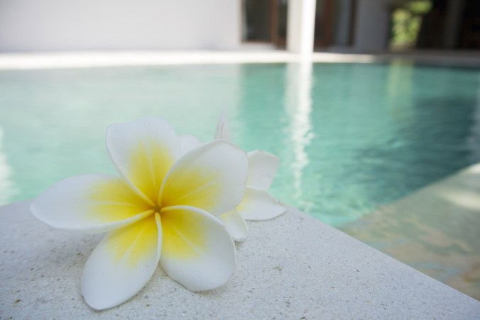Spa Schwimmbad Wellness