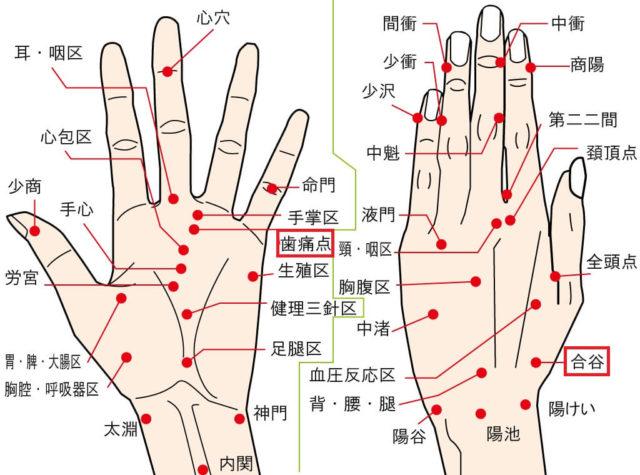 歯の痛みを緩和する手のツボ2選
