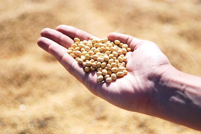 大豆アレルギーの症状と気を付けるべきポイント5つ