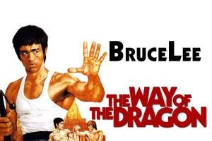 Film Kungfu Terbaik Bagi Kalian Penggemar Action