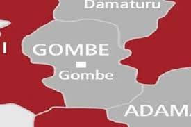 Gombe uncovers 431 ghost workers