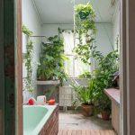 5 Best Indoor Plants To Grow In Your Bathroom Iproperty Com My