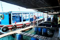 Floating Fish Markets and one of the many Russians