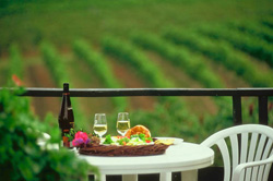 wine-and-food Lifestyle C / Leefstyl C