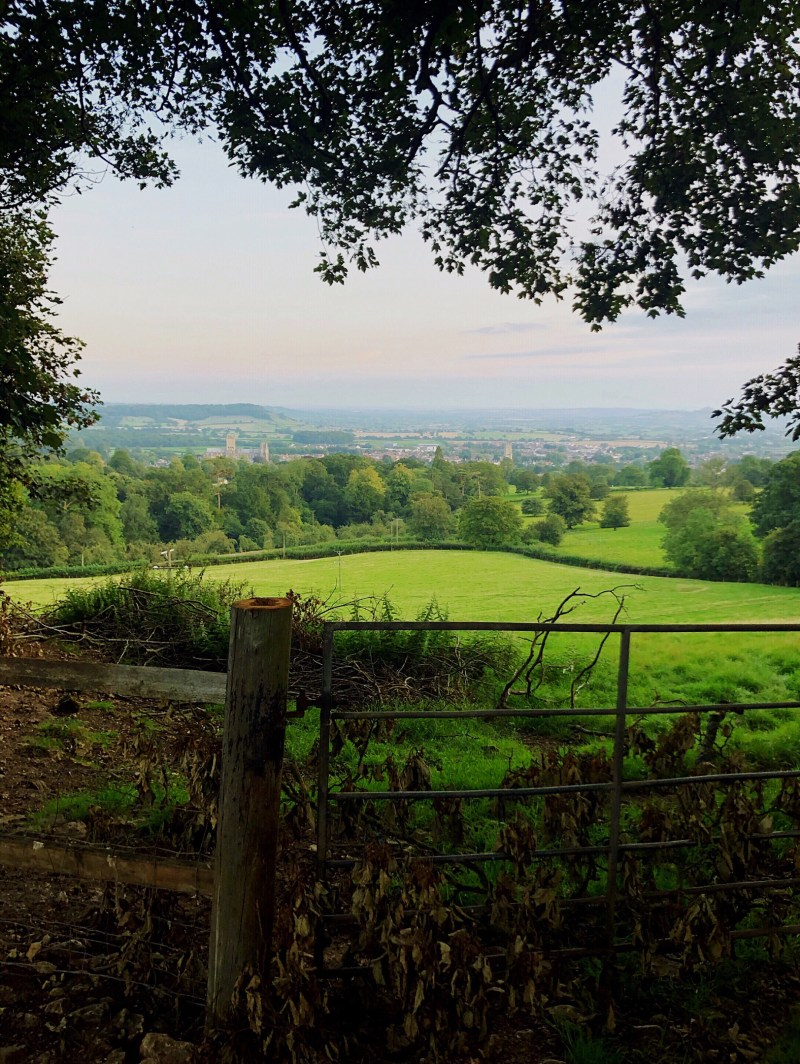A gorgeous circular walk from Wells Cathedral