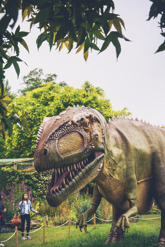Come and meet the dinosaurs at Bristol Zoo