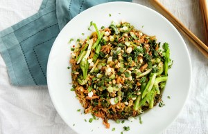 broccoli-noodle-bowl_as_1-1
