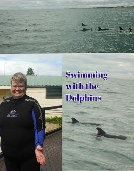 where to see dolphins in australia
