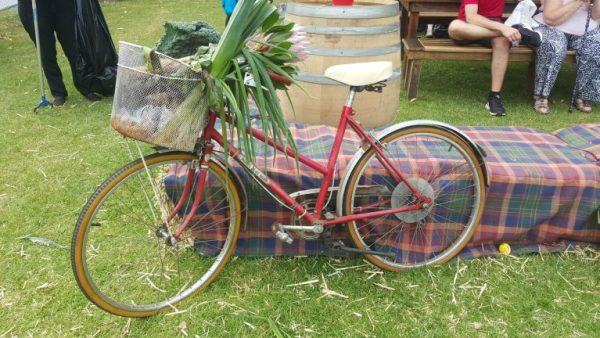 Reasons why camping is good for you. Pic of bicycle.
