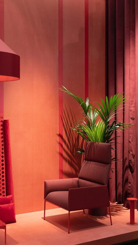 Cozy redish room with red window stores and a green plant
