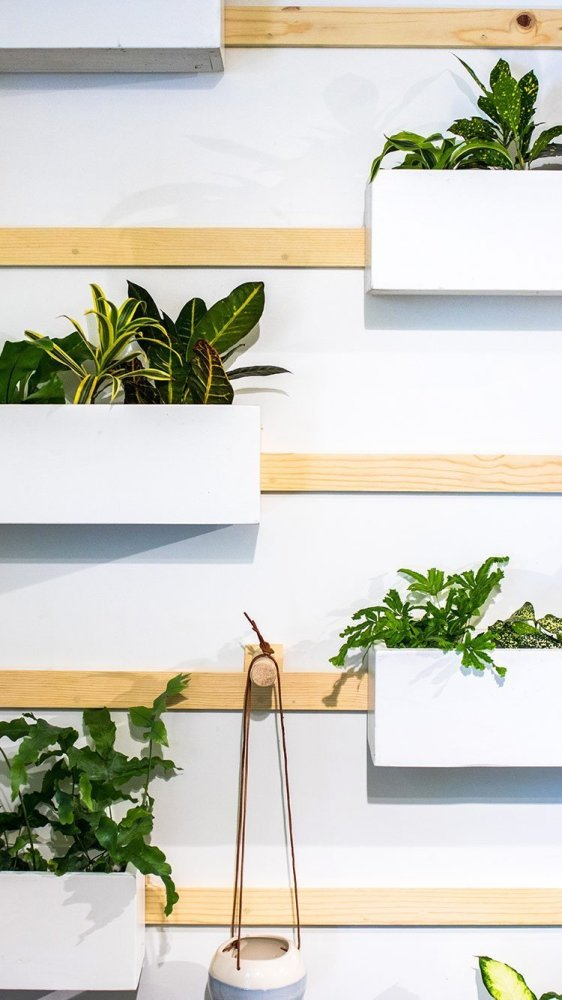 Very Trendy are this planted walls for your home
