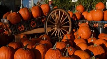 Eventi Halloween: Veneto