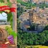 Pergola: 46esima Festa del Vino 22 – 24 luglio 2016