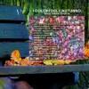 I Colori dell'Autunno: una scintilla musicale per scaldare le vostre fredde giornate