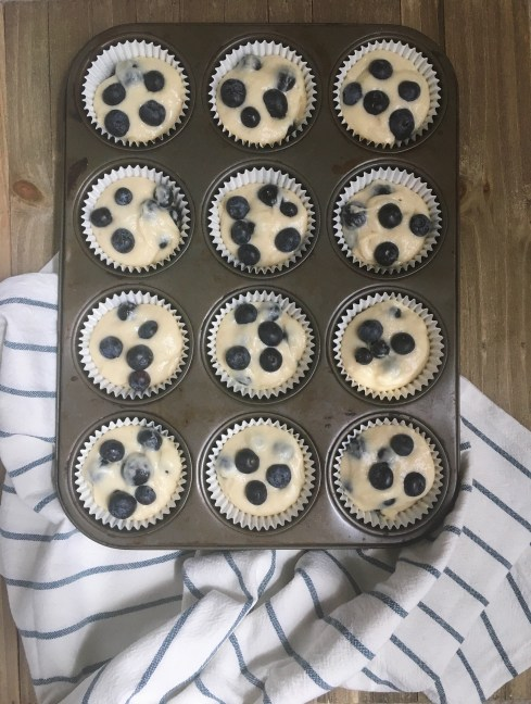 Blueberry muffins in a baking tin
