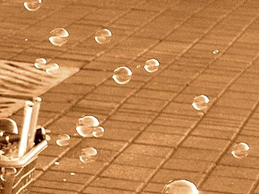 Bubbles of Life #WordlessWednesday