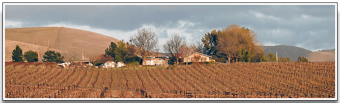 Livermore Remains a Safe Bet for Buyers and Sellers