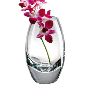 "Badash Crystal <a href=""https://lifestylesgiftware.com/product/badash-crystal-radiant-european-mouth-blown-crystal-11-in-vase/"">Radiant European Mouth Blown Vase</a>"