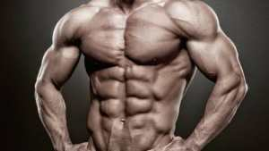 Body Muscles Training Tips