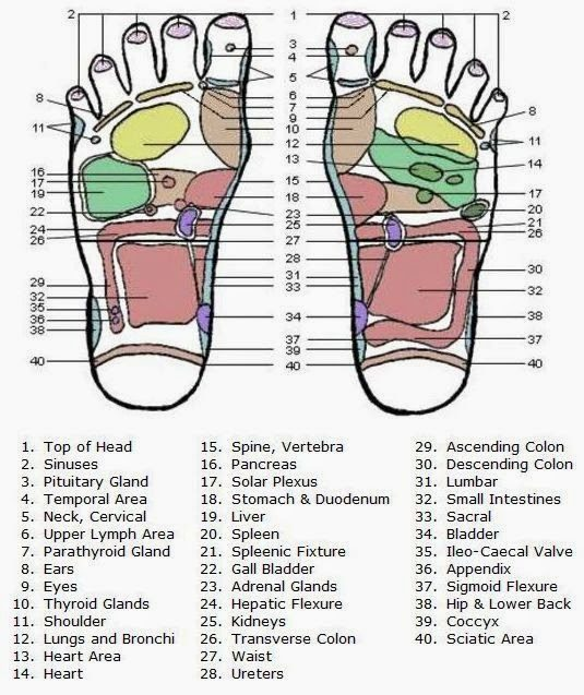 Acupressure points for cervical and other disease diagnose ...
