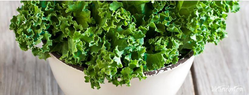 kale food immune system