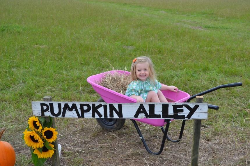 P at Pumpkin Alley