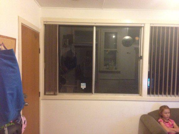 The back door and window