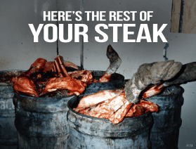 Heres-Rest-of-Your-Steak-PETA