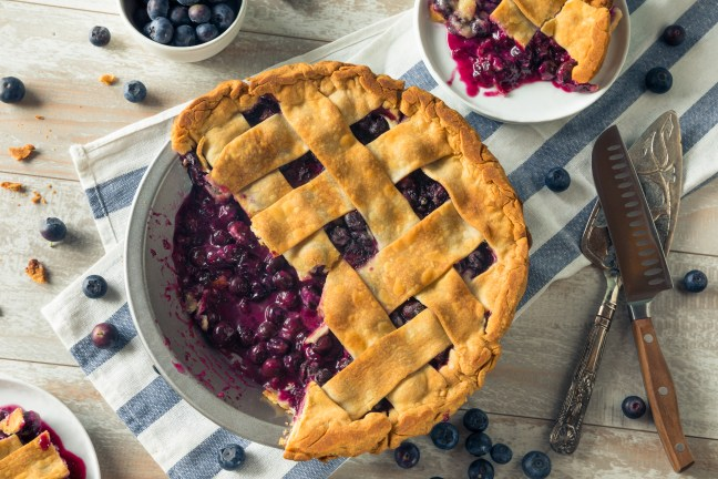 Sweet Homemade Blueberry Pie Ready to Eat