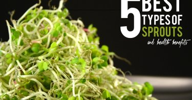 5 best types of sprouts, sprouting mung beans