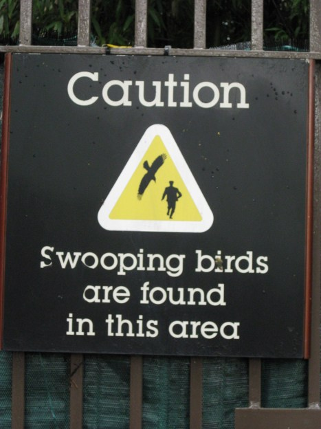 A sign evoking North By Northwest? Nope, just a friendly advisory near the Japanese gardens
