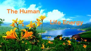 Human Life Energy