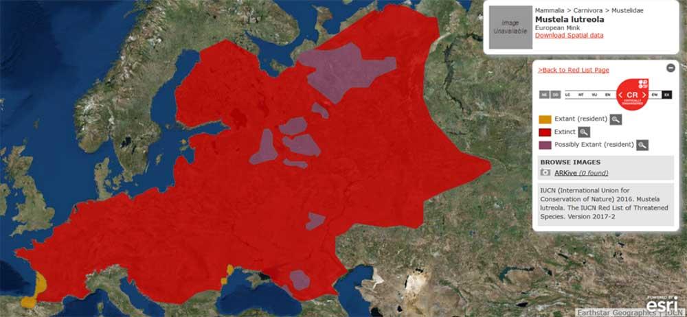 carte de la régression de l'aire de répartition du Vison d'Europe au niveau mondial