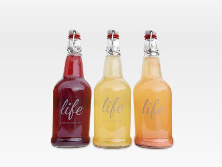 LIFE | 3-Pack Water Kefir