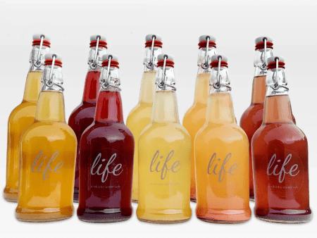 LIFE | 10-Pack Water Kefir