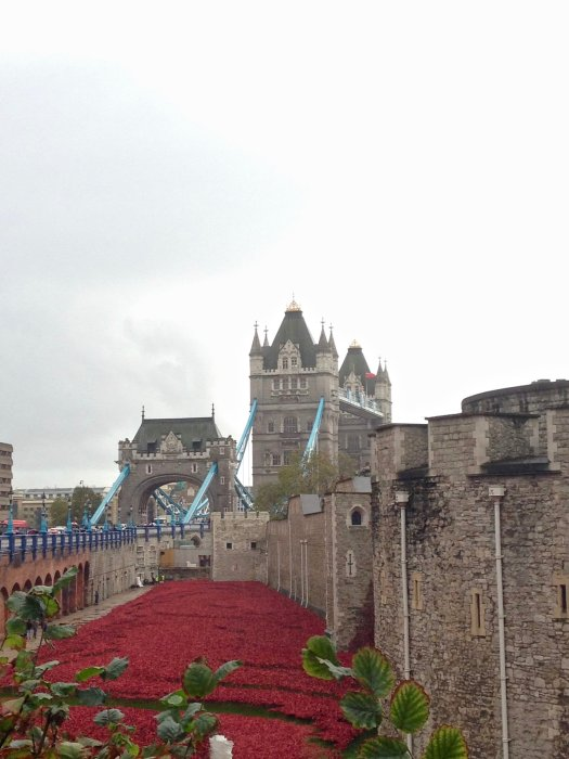 tower-of-london-and-tower-bridge-poppies