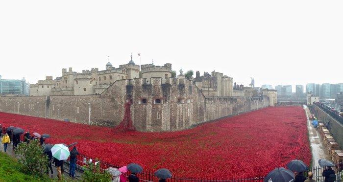 tower-of-london-panoramic-poppies