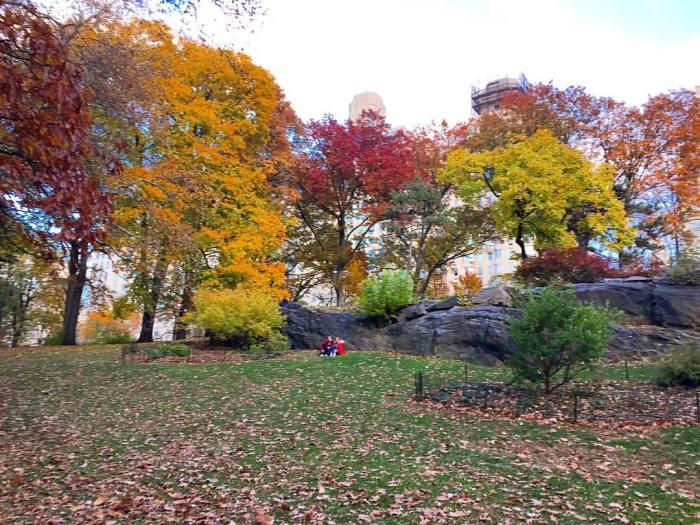 central park autumn colours