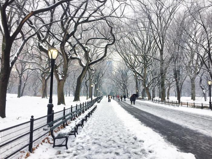 snow central park