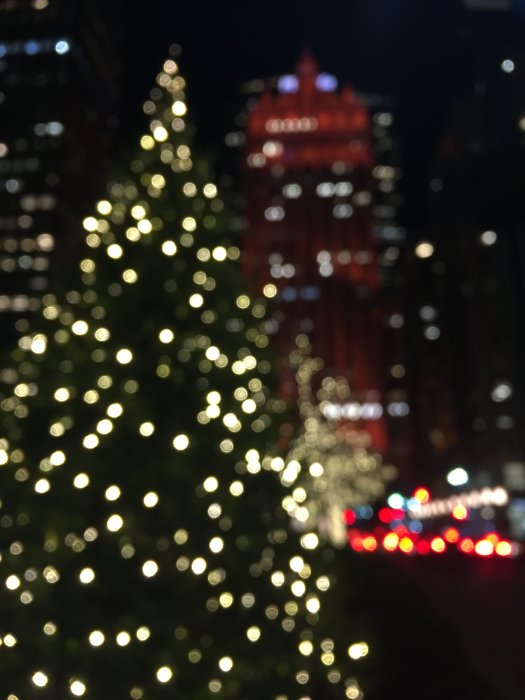 holiday decorations and christmas trees on park avenue nyc