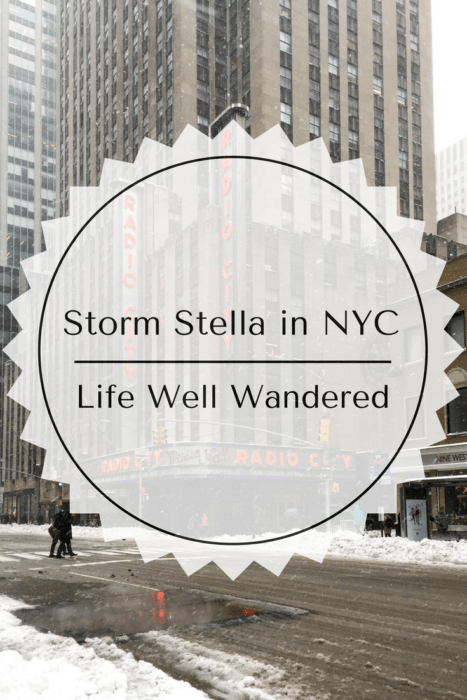 Storm Stella in NYC Photo Journal