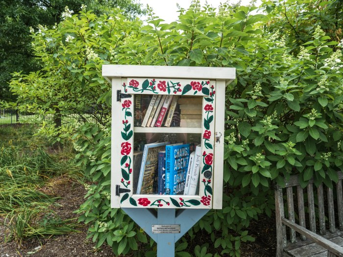 free book library washington dc
