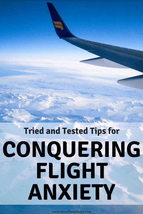 Tried and Tested Tips for Conquering Flight Anxiety: As an anxious flyer and traveler, I use these methods every time I fly to make the in flight experience less daunting and anxiety-inducing. Read for tips on conquering flight anxiety. | #travel #travelanxiety #traveltips #travelplanning #flightanxiety | Travel Anxiety | Flight Anxiety | Pre-Travel Jitters | How to conquer flight anxiety | Fear of flying tips