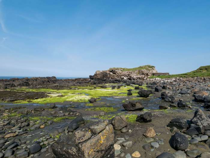 Dinosaur footprints have been found at Rubha nam Brathairean (Brothers' Point) Isle of Skye.