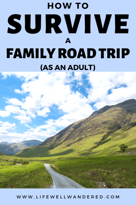 How to Survive a Family Road Trip as an Adult