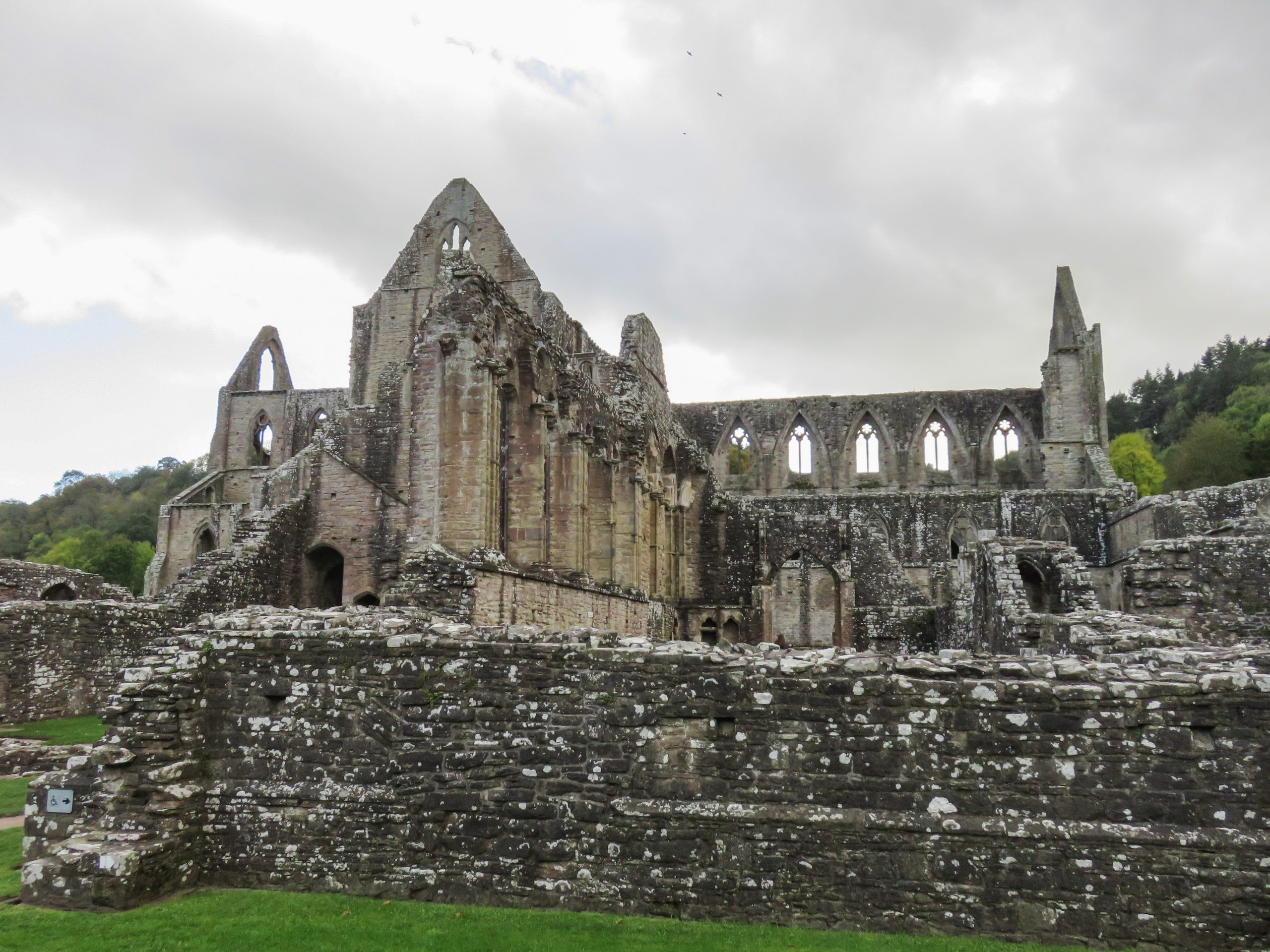 view of entirety of tintern abbey from ruined monastic buildings